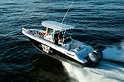 bateau Wellcraft